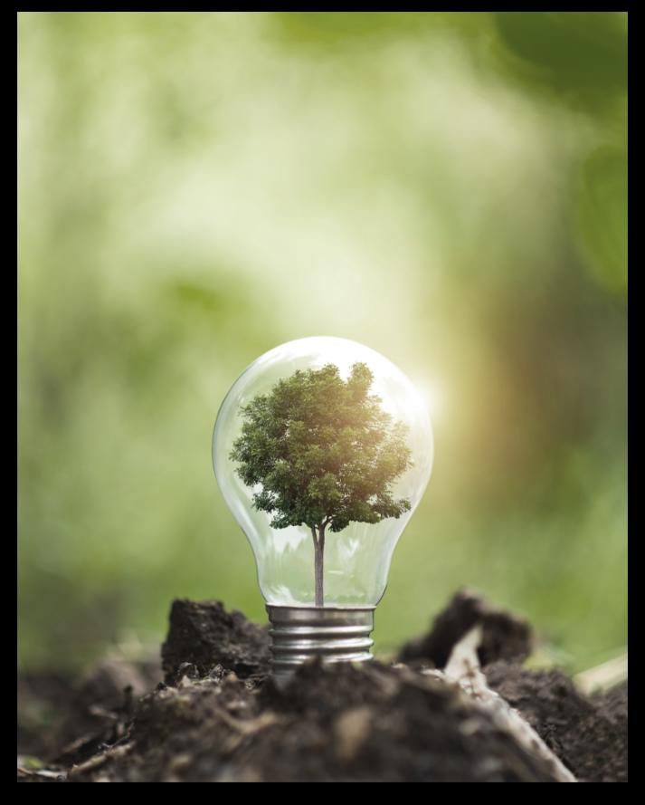 Ampoule avec un arbre qui pousse à l'intérieur